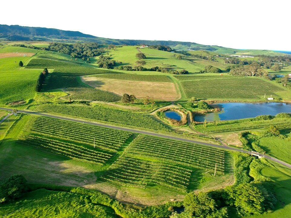 Crooked River Wines in Gerringong is popular for weddings and events.