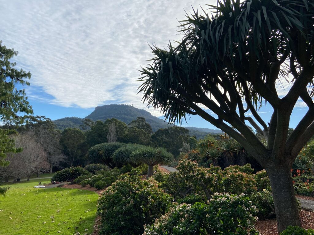 Wollongong Botanic Garden is only ten minutes away from Balgownie.