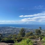 The view from Mount Keira Summit Park.