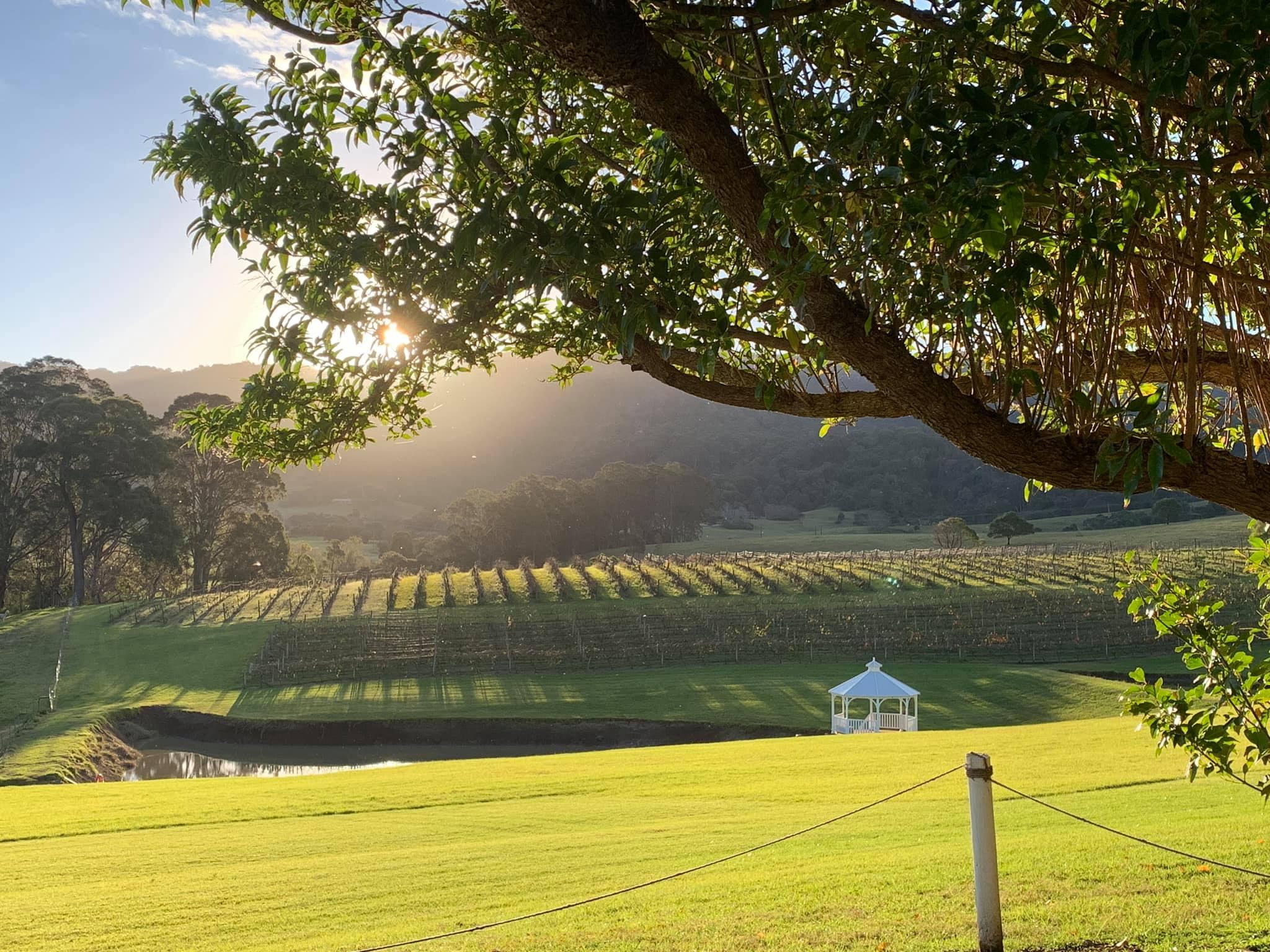 The Fold Illawarra Wineries Silos Estate Berry