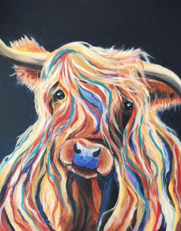 the fold illawarra highland cow at attaboy restaurant dapto