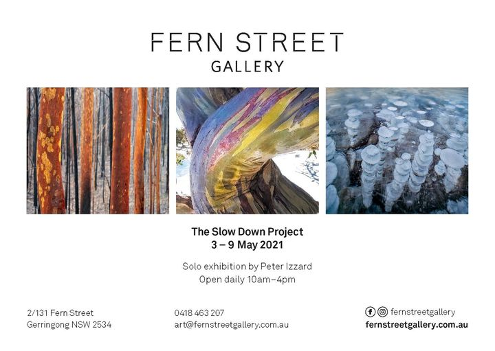 the fold illawarra solo exhibition by peter izzard