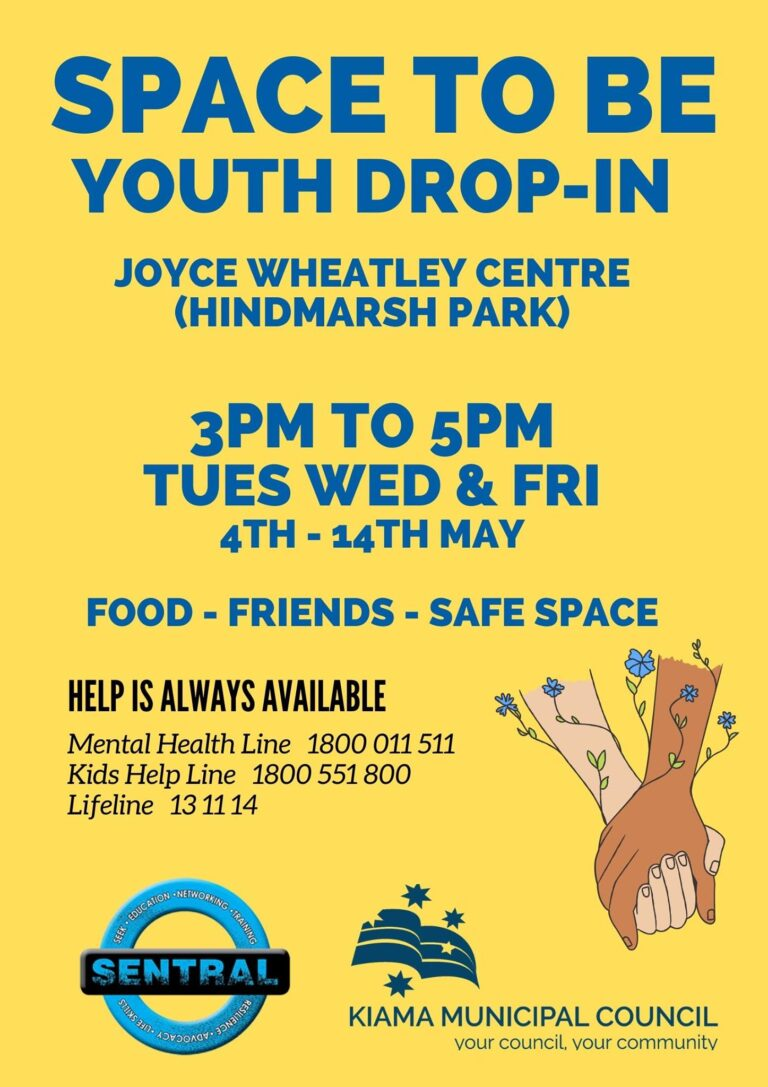 the fold illawarra space to be youth drop in 768x1087