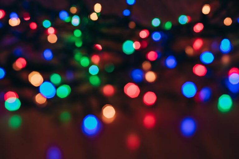 the fold illawarra christmas lights and night photography 768x512