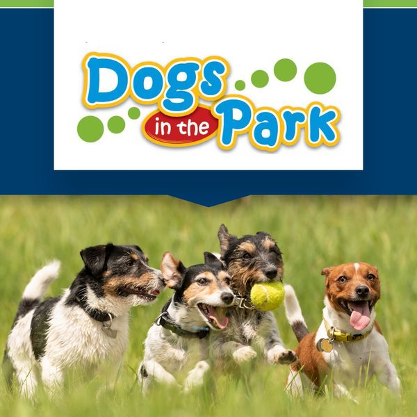 the fold illawarra dogs in the park nsw shellharbour